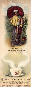 The Belle of Lipton's Dambatenne Ceylon Tea Gardens. c1904.